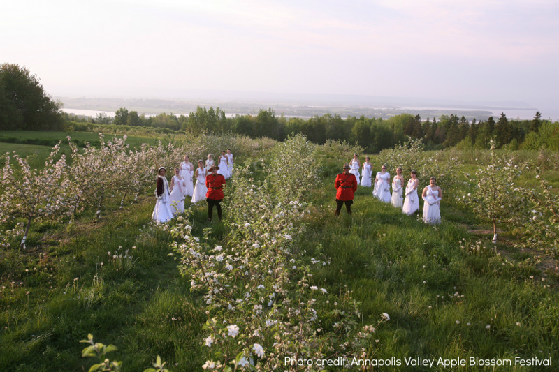 Apple Blossom Festival in Spring, Annapolis Valley Nova Scotia