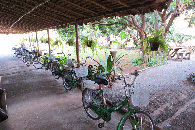 Photo of vintage bicycles waiting to be rented in Chiang Mai, Thailand.