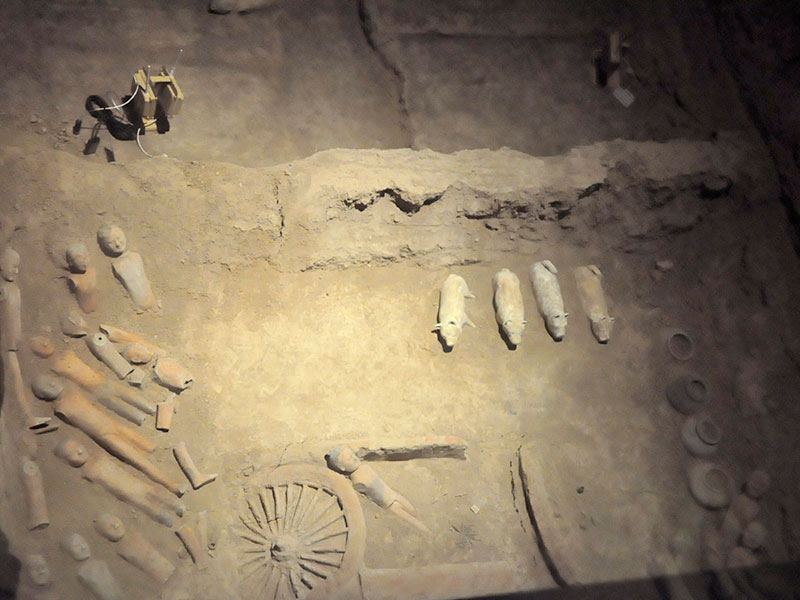 Chinese artifacts made visible to the public