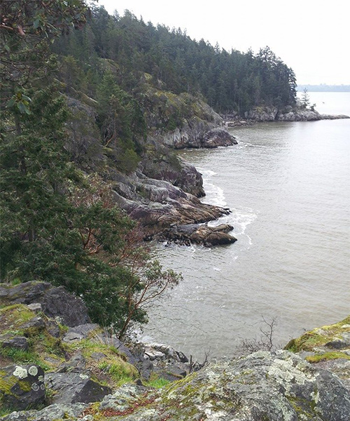 wet weather hiking in lighthouse park north vancouver