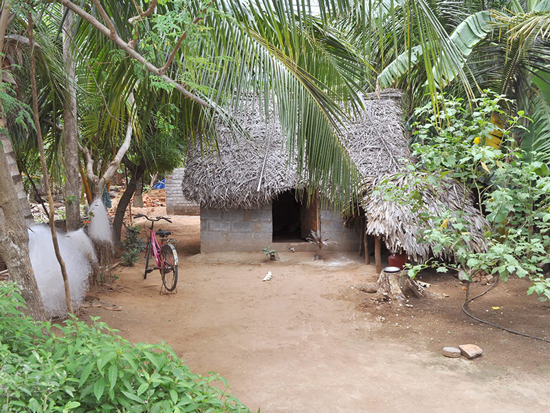 Houses in Nallan Pillai Petral, India