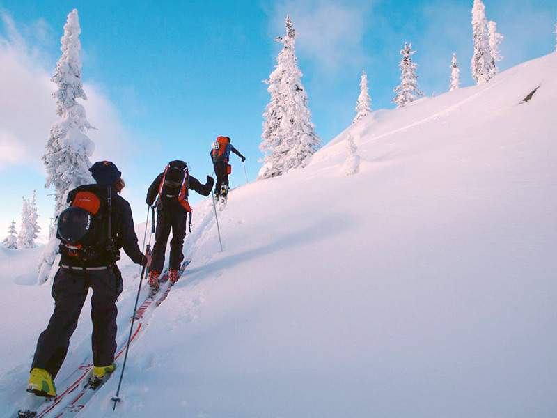 Travel Insurance Backcountry Skiing