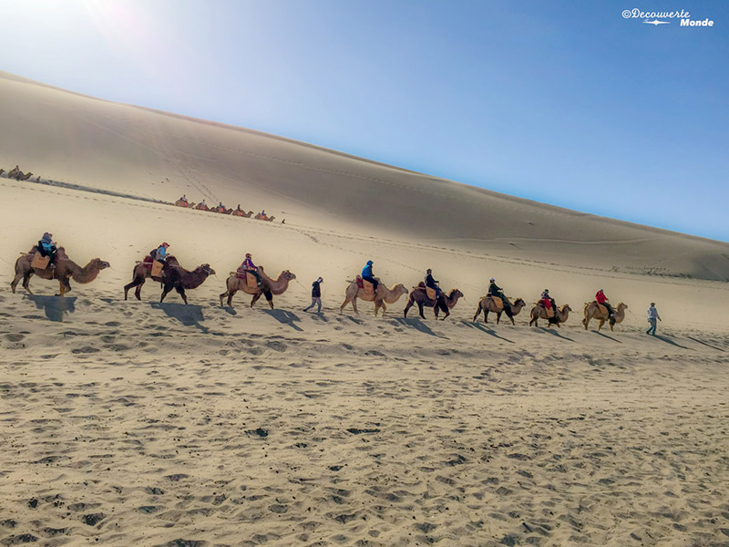 silk road camel riders in Chinese desert
