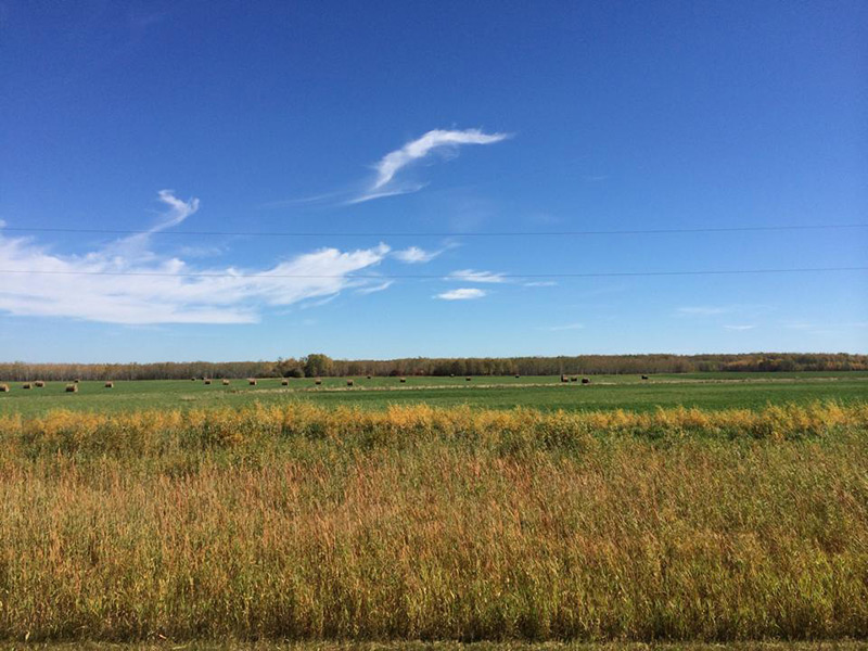 Photo of the flatness of Manitoba's wheat plains are a marvel for even a seasoned traveller.