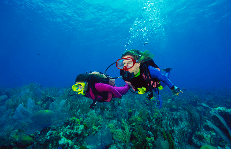Group of scuba divers on holiday swimming together. Request info on travel insurance for scuba divers.