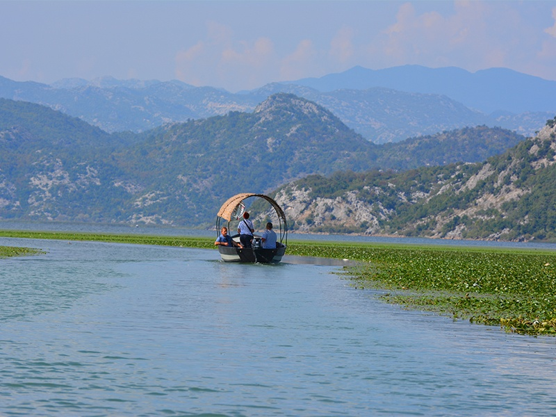 Skadar Lake by boat