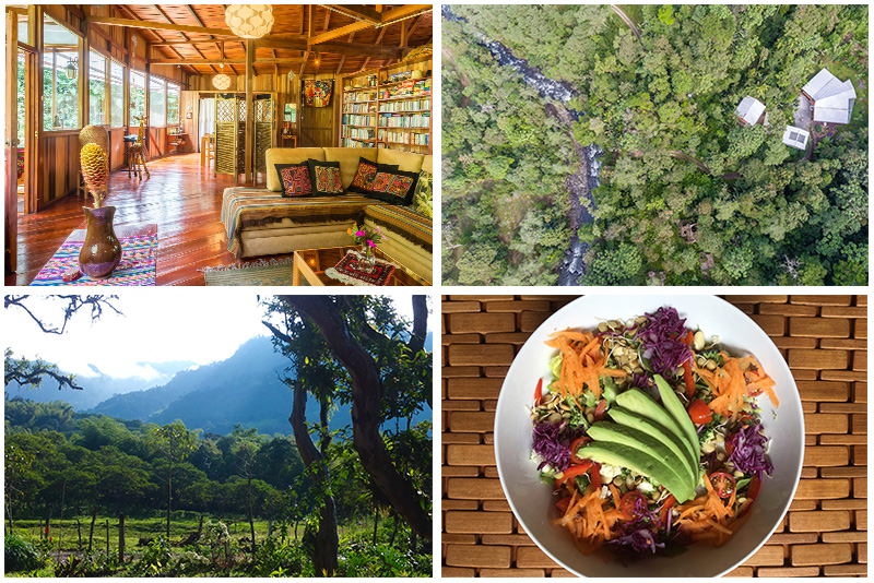 Ecuador raw food yoga hiking retreat