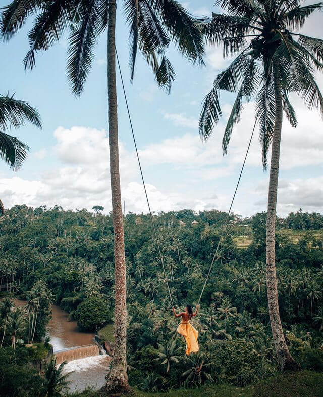 bali rainforest swing