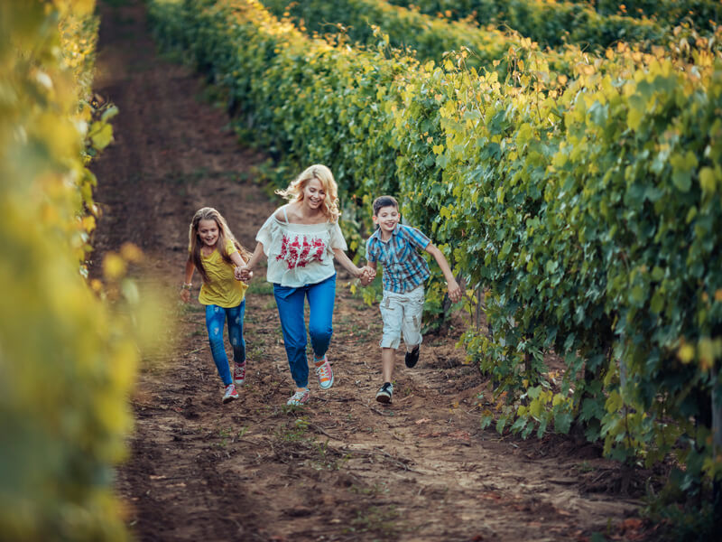mother and two children walk through a vineyard
