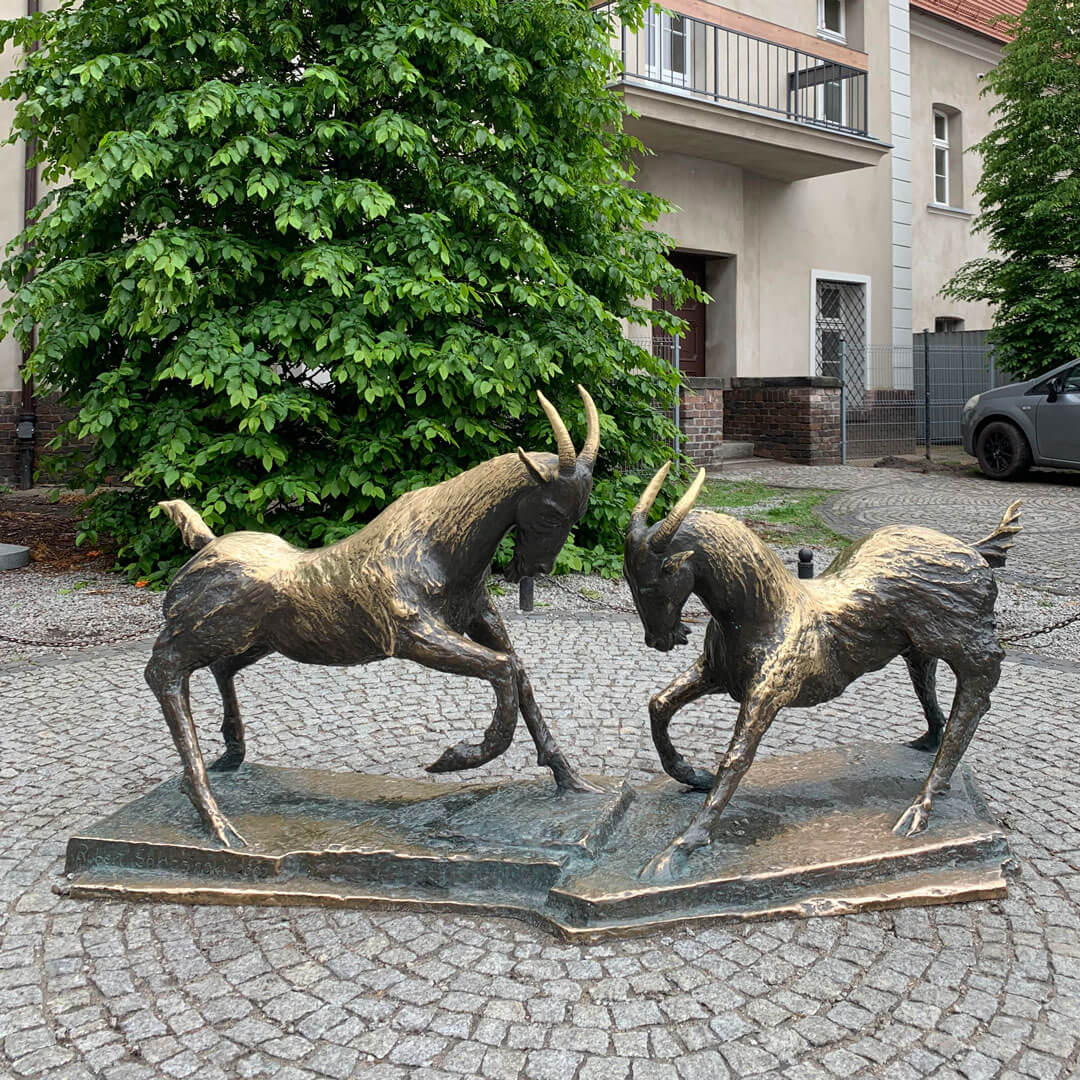 poznan-duelling-goats