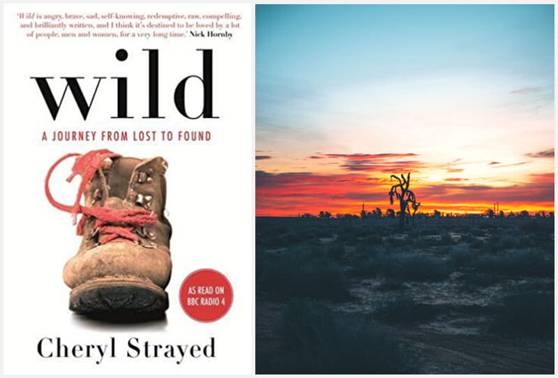 Wild book cover and Mojave Desert