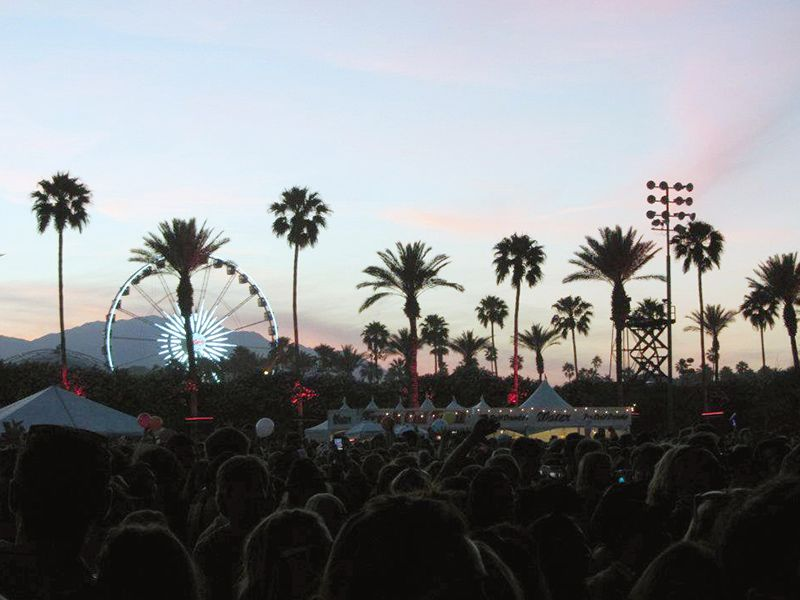 sunset over crowd with palm trees and Ferris wheel
